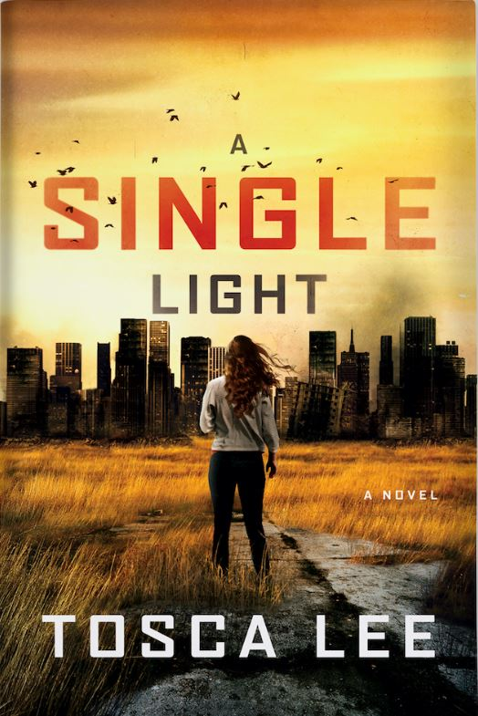 A Single Light Cover